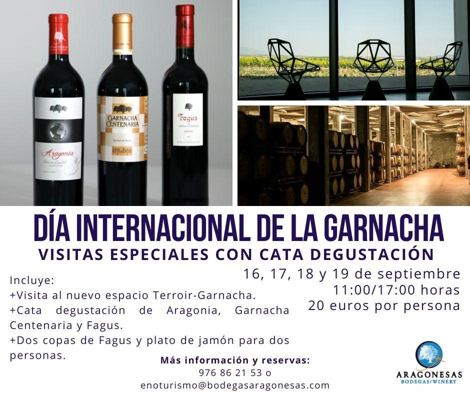 Visitas especiales Día Internacional de la Garnacha a Bodegas Aragonesas